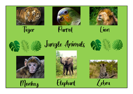 Jungle-Animals-Worksheets.pdf