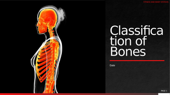 2.-Classification-of-Bones.pptx