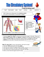 Living-Things!-Human-Body-Circulatory-System.pdf