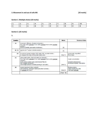 pdf, 515.28 KB