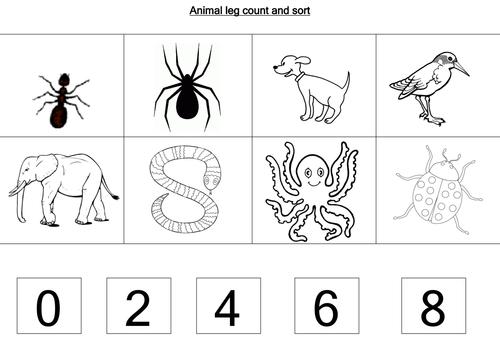 Animal Worksheets By Loretolady
