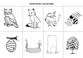 animal worksheets by loretolady teaching resources. Black Bedroom Furniture Sets. Home Design Ideas