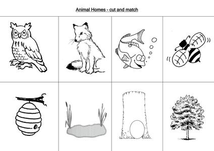 animal worksheets by loretolady uk teaching resources tes. Black Bedroom Furniture Sets. Home Design Ideas