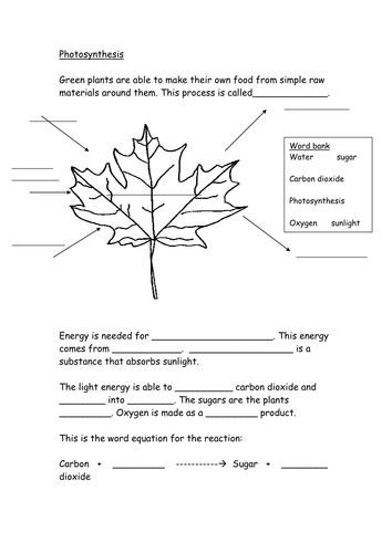 worksheets photosynthesis for kids worksheets opossumsoft worksheets and printables. Black Bedroom Furniture Sets. Home Design Ideas