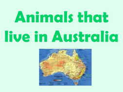 australian animal facts powerpoint
