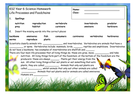Adjectives Worksheets For 1st Grade Word Foodchains Homework Worksheet By Sueemc  Teaching Resources  Tes Column Addition Money Worksheets Pdf with Adding 3 Digits Worksheet Word Worksheet Solving Absolute Value Equations Worksheets Excel