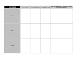 Microbes Summary Sheet Blank 3 main types.doc