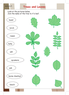 trees_and_leaves.pdf