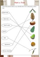 plant_a_tree_answers.pdf