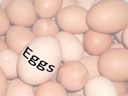 Eggs Theory