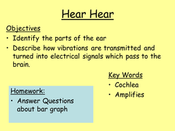 Ear how we hear powerpoint by harrisschool teaching resources tes ear how we hear powerpoint ccuart Images