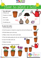 How to plant a bulb