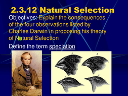 Natural Selection & Speciation