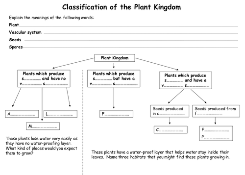 plant classification by teach biology teaching resources tes. Black Bedroom Furniture Sets. Home Design Ideas