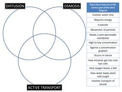 Diffusionosmosisactive transport venn puzzle by biogas66 diffusionosmosisactive transport venn puzzle ccuart Images