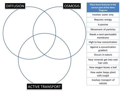 Diffusion/Osmosis/Active Transport Venn Puzzle by BioGas66 ...