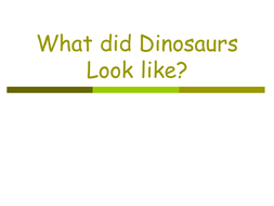 What did Dinosaurs Look like.ppt
