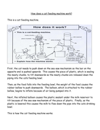 How does a cat feeding machine work oral explanation for talk for writing.doc