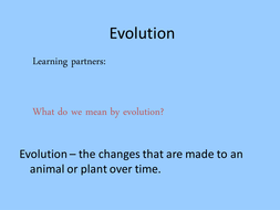 adaptation lesson.ppt