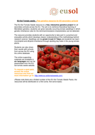 EU-Sol Tomato Seeds- Free Genetic Resource