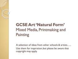 Natural_Form_GCSE_Unit_1_NEW_Jan_2011.ppt