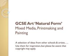 GCSE Art 'Natural Form' Powerpoint 2D