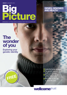 Big Picture: Genes, Genomes and Health