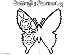 Spring symmetry worksheetseggsbutterfly flowers by felt spring symmetry worksheetseggsbutterfly flowers thecheapjerseys Images
