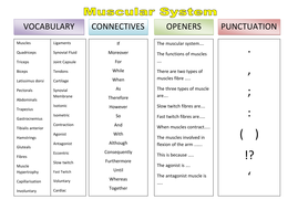 VCOP - Muscular system.doc
