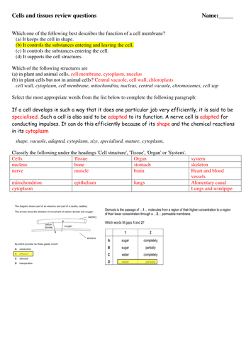 1st Grade Grammar Worksheets Cells Unit By Masfar  Teaching Resources  Tes Second Conditional Worksheets Word with Making Inferences And Drawing Conclusions Worksheets Excel  Compound Words Worksheets For Grade 3 Word