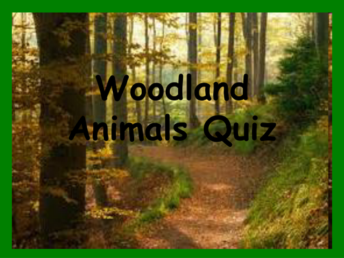 Translations Into Italian: Woodland Animals Quiz By