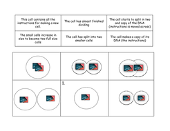 Cell Division by fiendishlyclever - Teaching Resources - Tes