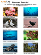 Galapagos or Galapa-Nos - worksheet.ppt