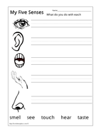 Senses Workbook by lizzie30590 - Teaching Resources - Tes