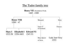 The Tudor family tree.doc