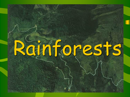 rainforest powerpoint presentation by groov e chik teaching