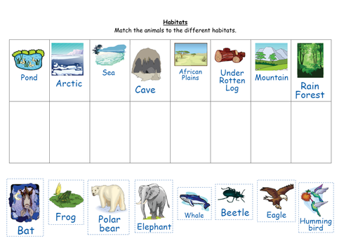 Animal Habitat Worksheets Davezan – Animal Habitat Worksheets for Kindergarten
