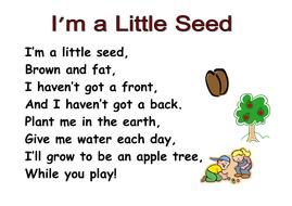 I'm_a_little_seed_poem.doc