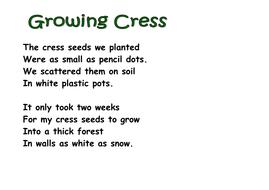 Growing_Cress_poem.doc