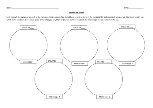 Cell division - Year 7 by hannahradford - Teaching Resources - TES