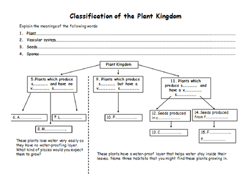 Classification of Plants and Animals by jballmate Teaching – Biology Classification Worksheet
