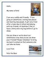 Class teddy bear diary instructions
