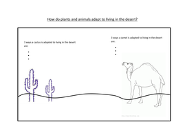 Hot Deserts Animals Adaptations By Sarah Colessmith Teaching Resources