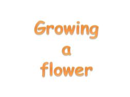 Growing a Flower PowerPoint