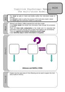 MultiStore models activity