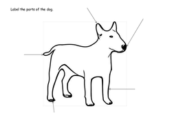 Label the dog worksheet by claireh1039 teaching resources tes label the dog worksheet ccuart Gallery