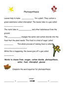 photosynthesis  worksheet.doc