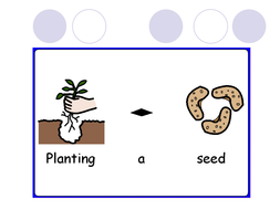 science planting a seed widgit powerpoint