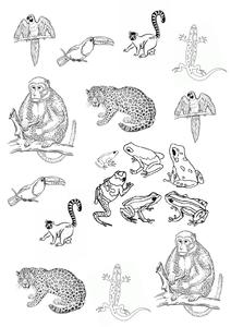 3-D Rainforest Henri Rousseau Art Pictures by googlie-eye