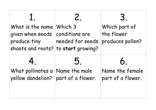 Plants - Life cycles and naming parts of a plant by ...
